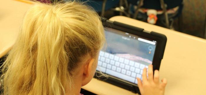 Online učenje
